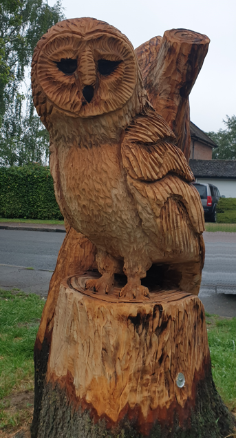 The Breachwood Owl